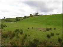 H2418 : Mullanacre Townland by Kenneth  Allen