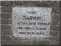TQ4361 : Commemorative stone outside Down House by Basher Eyre