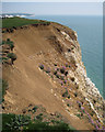 TV5097 : Erosion, Seaford Head: 1 by Robin Stott