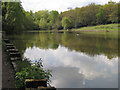 SP1096 : Keeper's Pool, Sutton Park by Robin Stott