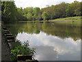 SP1096 : Keeper's Pool, Sutton Park by Robin Stott