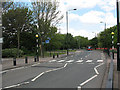 TQ4281 : Zebra crossing on Stansfeld Road by Stephen Craven