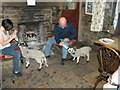 NY8906 : Feeding Time at Tan Hill Inn : Week 19
