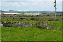 R2966 : Rough grazing at Ballycorick by Graham Horn