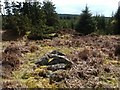 NS4580 : Shiels of Gartlea: small cairn by Lairich Rig