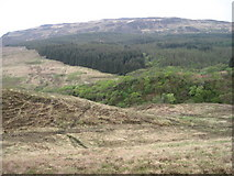 NM5863 : Towards Glenmore River by Chris Wimbush