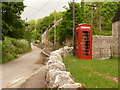 SY6884 : Bincombe: telephone box by Chris Downer