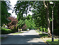 "Dist:0.5km<br/>A typical wide, leafy road in this posh suburb laid out by William Webb in 1901-20, although some are private and gated. Very large houses, though not particularly architecturally distinguished. Webb's idea was that gardens be designed first as ""...the house is but the complement of the garden..."" The houses are all well set back from the road, hence none is visible here!"