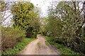 SU6993 : The Ridgeway at Watlington by Steve Daniels