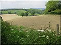 SO6235 : Sloping farmland, west of Marcle Hill : Week 22
