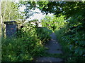 SJ8901 : Bridge over the old Stourbridge to Wombourne line by Richard Law