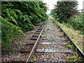SJ3978 : Disused railway line near North Road by John Brightley
