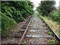 SJ3978 : Disused railway line near North Road by John Brightley