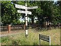 SJ7365 : Old signpost on Jones's Lane by Stephen Craven