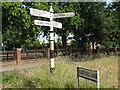 SJ7365 : Old signpost on Jones's Lane by Stephen Craven