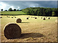 NY5563 : Hay bales, Lanercost by Karl and Ali