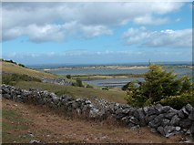 M2807 : Limestone wall at Sheshia with a view towards Galway Bay by Neil Theasby