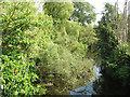 SJ7167 : River Dane upstream of Byley Bridge by Stephen Craven