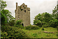 R8099 : Castles of Connacht: Cloondagauv, Galway by Mike Searle