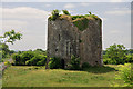 M4509 : Castles of Connacht: Ballymaquiff, Galway by Mike Searle
