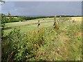 SW8760 : Fence and path near Lady Nance by Derek Harper