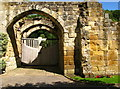 SE4498 : Mount Grace Priory : Week 28