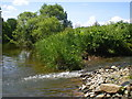 Dist:0.3km<br/>The Billie Burn empties into the River Whiteadder just upstream from the Paper Mill. A large flood some months ago deposited a quantity of boulders and rocks at the mouth - the burn has eventually forced its way through again.