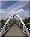 SK4091 : Halfpenny Bridge, Tinsley : Week 31