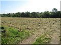 R5760 : Cut hay near Quinspool by David Hawgood
