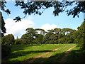 SW7827 : Small field near Mawnan Church by Rod Allday