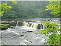 SE0188 : Aysgarth Upper Falls by Jonathan Billinger