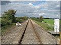 TQ9628 : Railway to Appledore by David Anstiss