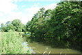 SU9946 : River Wey / Wey Navigation by N Chadwick