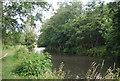 SU9946 : The Wey Navigation (River Wey) by N Chadwick