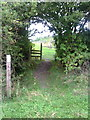 SP7909 : Footpath joins footpath which runs around forestry by Roger Templeman