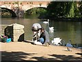 SP2054 : Swan ringing, River Avon, Stratford-Upon-Avon by David P Howard