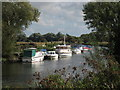 TR2763 : Boats on River Stour by Oast House Archive