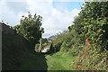 SX5353 : Plymouth: nearing Elburton by Martin Bodman