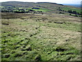 SJ9882 : Footpath up Black Hill on Whaley Moor by Chris Wimbush