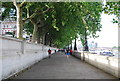 TQ3079 : The Albert Embankment by Nigel Chadwick