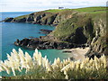 SW7011 : Housel Cove and Lizard Lighthouse by Philip Halling