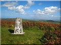 SW4835 : Trig point on Castle-an-Dinas by Rod Allday