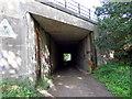 SJ3177 : Chester High Road Underpass by J Scott