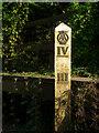 TL2116 : AA branded water gauge, near Codicote Bottom : Week 40