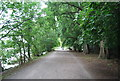 TQ2376 : Thames Path to Putney by N Chadwick