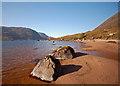 NG8650 : Beach on Loch Damph : Week 41