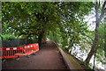 TQ1977 : The Thames Path upstream of Kew Railway Bridge by N Chadwick
