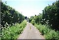 TQ8469 : Shoregate Lane by N Chadwick
