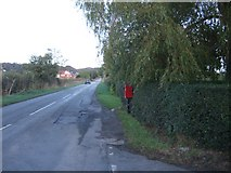 SJ5266 : The road to Willington Corner by David Smith