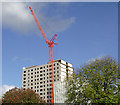 SO9196 : The demolition of Phoenix Rise at Blakenhall, Wolverhampton : Week 42